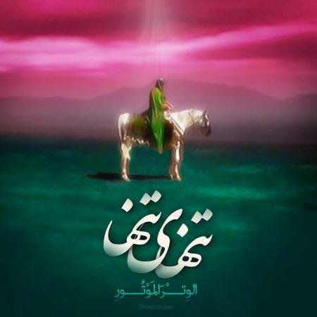 امام حسین ع الوتر الموتور تنهای تنها